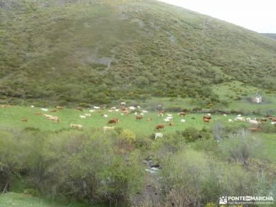 Montaña Palentina-Fuentes Carrionas;ruinas de numancia provenza francesa jardines de la granja esca